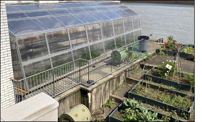 DG Greenhouse