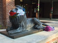 rblion yarn bomb with muzzle and tail warmer