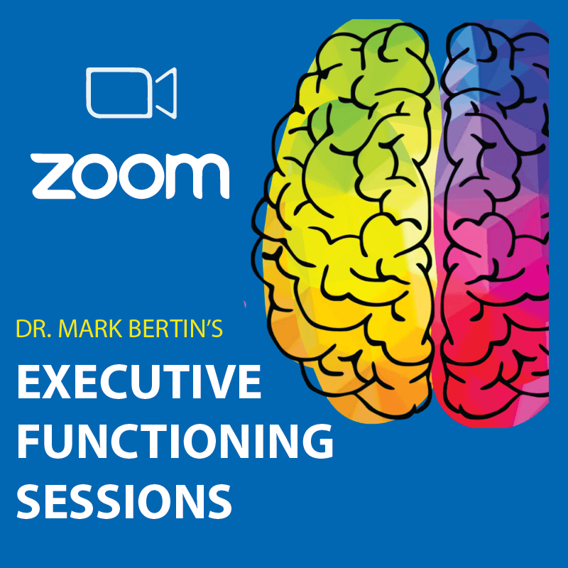 DR. MARK BERTIN'S EXECUTIVE FUNCTIONING SESSIONS